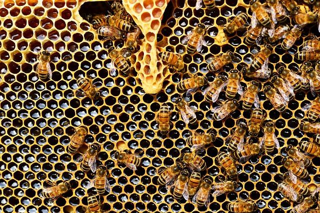 hive-hadoop-example